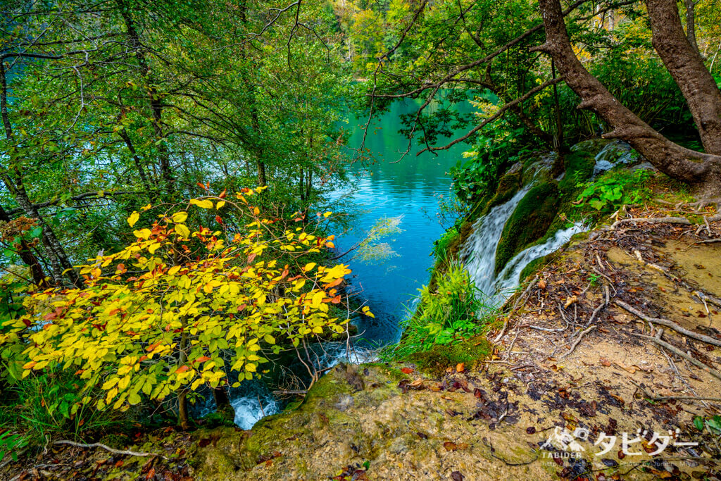 プリトヴィッツェ湖群国立公園の美しい滝