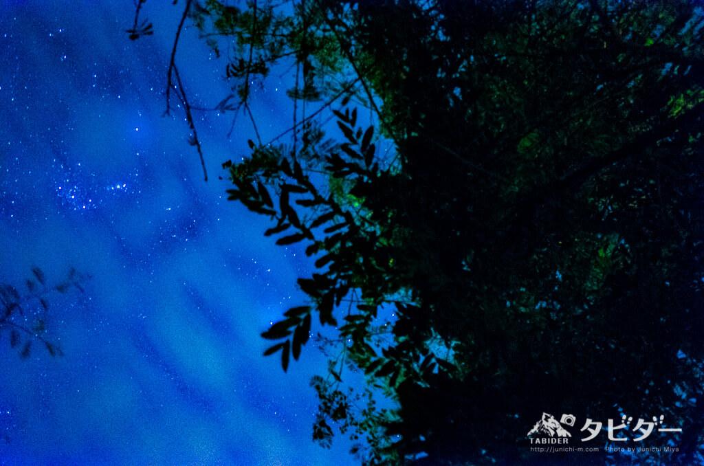 チョベサファリロッジから見える星空
