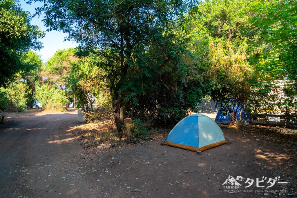 チョベサファリロッジの僕の激安テント